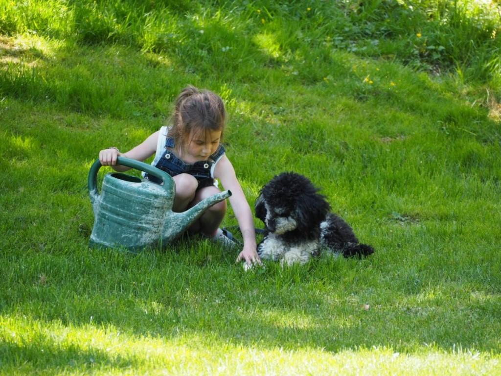 Urlaub mit Hund und Kind Altmühltal